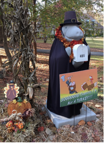 A Bewitching Costume for Manny the Manatee.